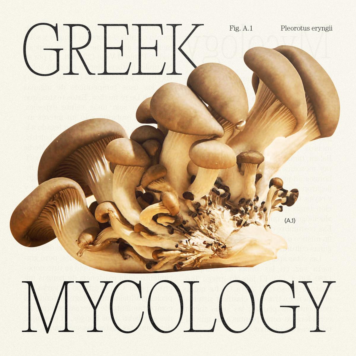 GreekMycology_Idea_MateoBuitrago-01