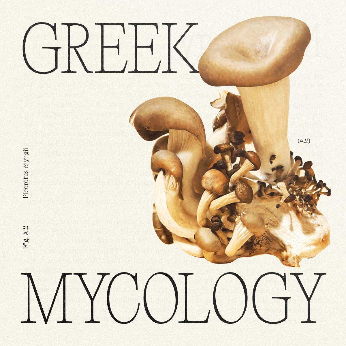 GreekMycology_Idea_MateoBuitrago-02
