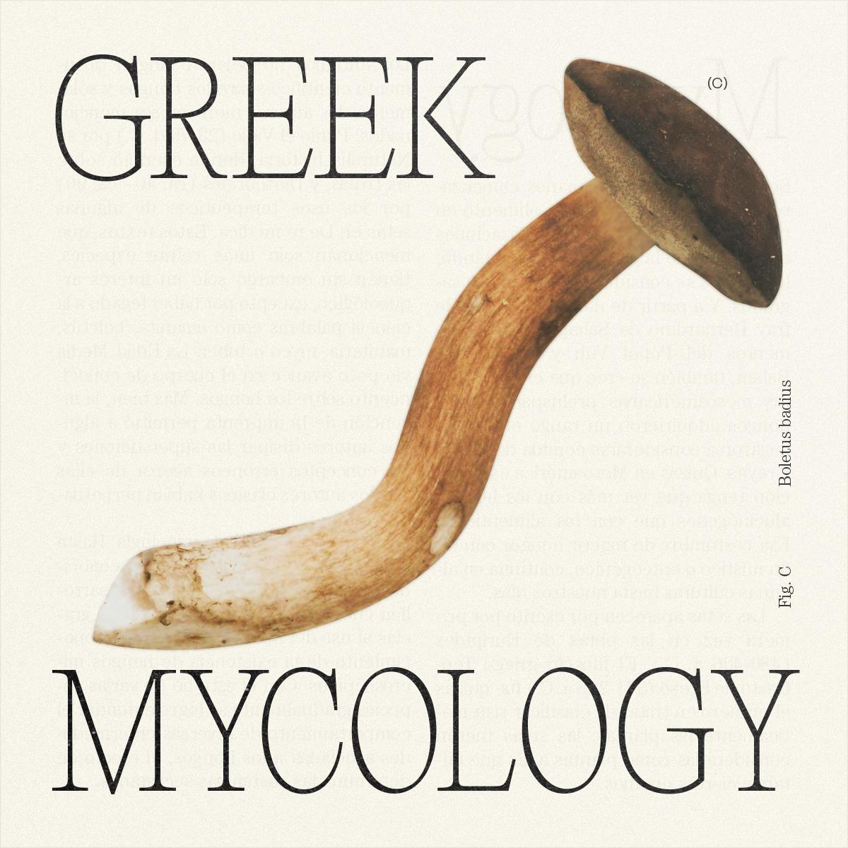 GreekMycology_Idea_MateoBuitrago-04